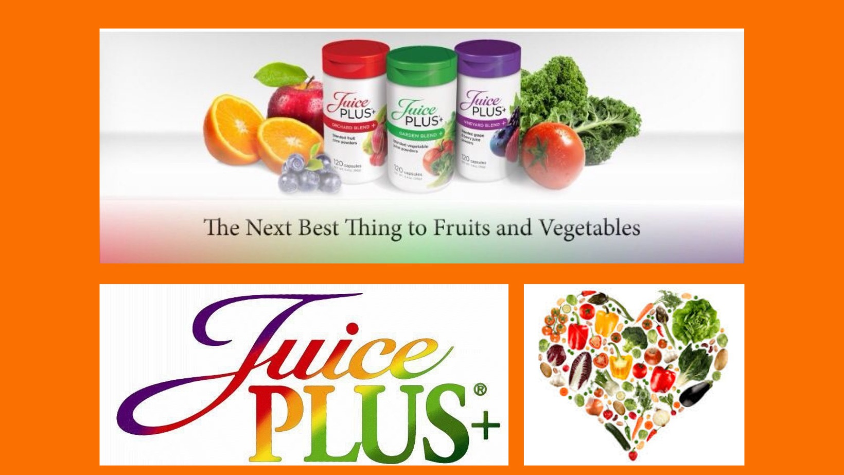 Wholesome Wellness + on Visibility Kings | Juice Plus+ Distributor | (800) 476-0830 | Fruit and Vegetable Nutrition For A Healthy Lifestyle.